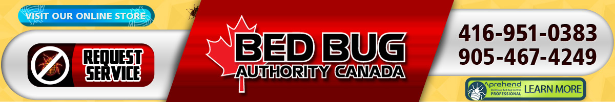 toronto bed bug heat treatment