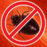 About Toronto Bed Bug Heat Treatment Bed Bug Authority Canada